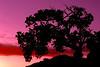 Sunset, Arches National Park, Utah