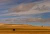 Wyoming. November 2008