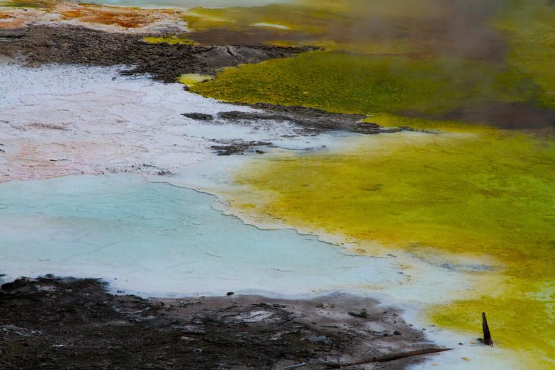 Yellowstone National Park, Wyoming.  May 2015