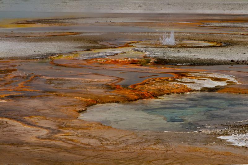 Black Sand Basin, Yellowstone National Park, Wyoming.  May 2015
