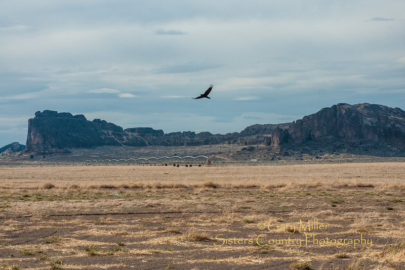 Fort Rock - Lake County in southern Oregon - Gary N. Miller - Sisters Country Photography