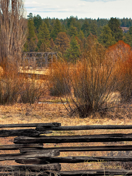 Camp Polk Meadow - Sisters, OR - Sisters Country Photography
