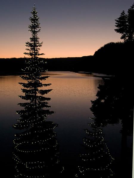 Suttle Lake Resort Christmas Tree...waiting