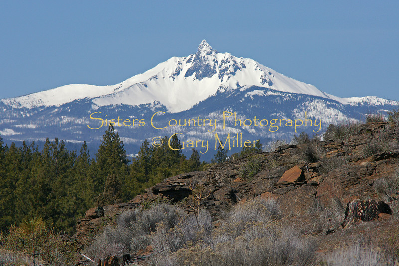 Mt. Washington from the Wilt Rd. burn area.