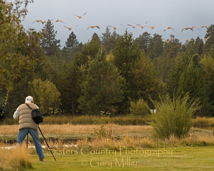 A photographer's morning at Black Butte Ranch - Sisters OR - Sisters Country Photography