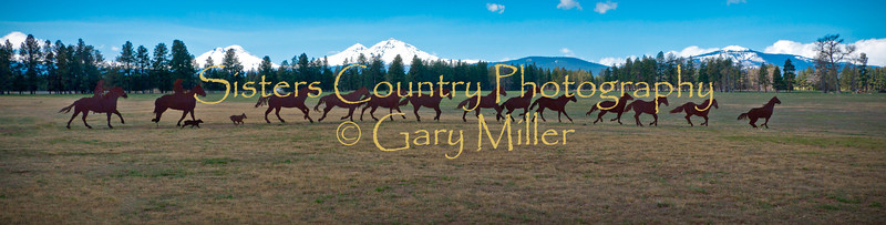 Photography by Gary Miller - Sisters Country Photography