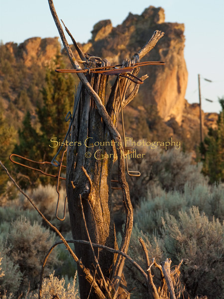High Desert ranching country surrounding the world famous climbing grounds of Smiith Rocks outside Redmond, OR. Photography by Gary Miller