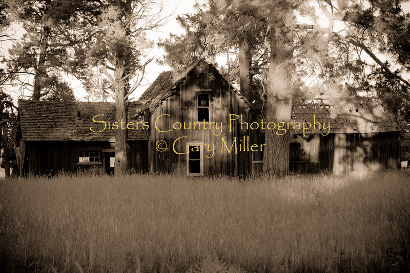 The old Cyrus homestead. Cloverdale Rd. Sisters, OR Photographer Gary Miller
