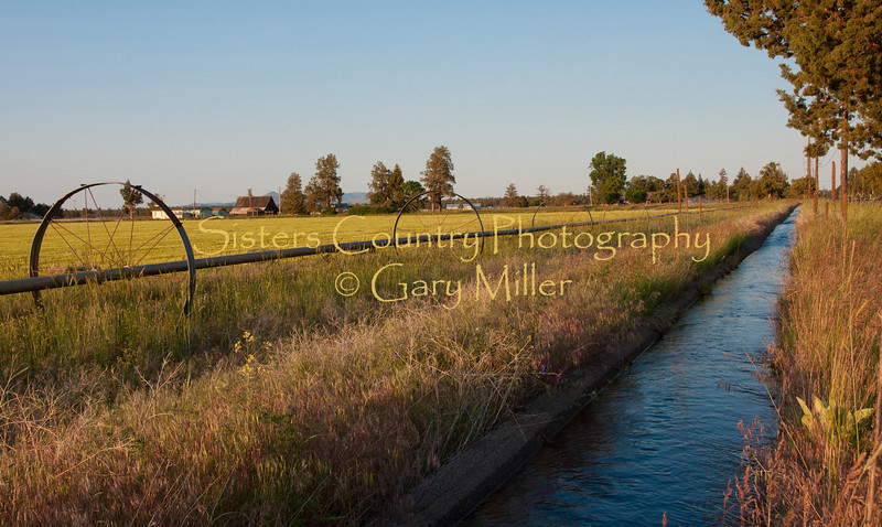 An irrigation ditch brings water, the lifeblood of the High Desert ranching community, to a grower's property in the Cloverdale area of Central Oregon near Sisters. Over the years more and more of these ditches have been lined saving millions of gallons of water that seeped into the soil as it travelled. Photo by Gary Miller