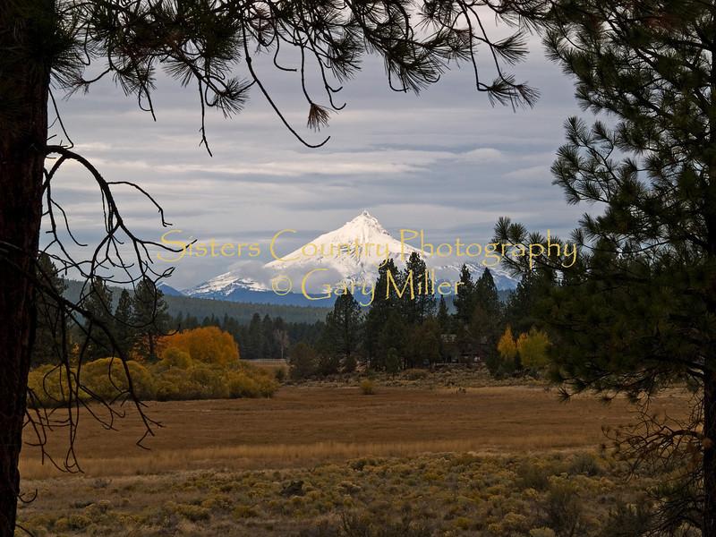 Mt. Jefferson gracing Indian Meadow.
