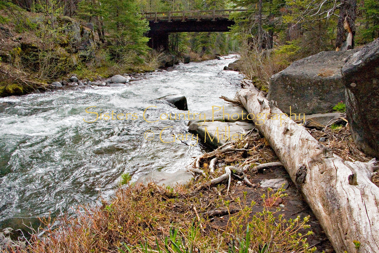 Bridge over Whychus (formerly Squaw)Creek