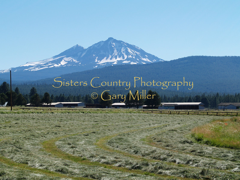 Sisters Country - Photos of the Sisters, Oregon Country - Haying time in Cloverdale, Sisters
