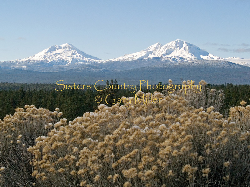 View of the Three Sisters Mountains of the Central Oregon Cascades from outside of Sisters Oregon. Photo by Gary Miller