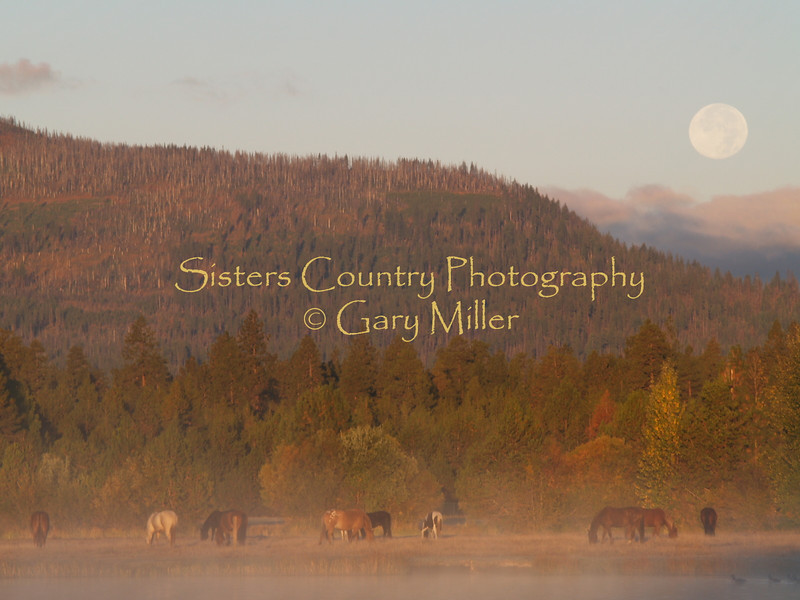 Sisters Country - Photos of the Sisters, Oregon Country