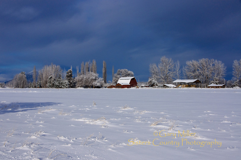 Winter on a Sisters Homestead