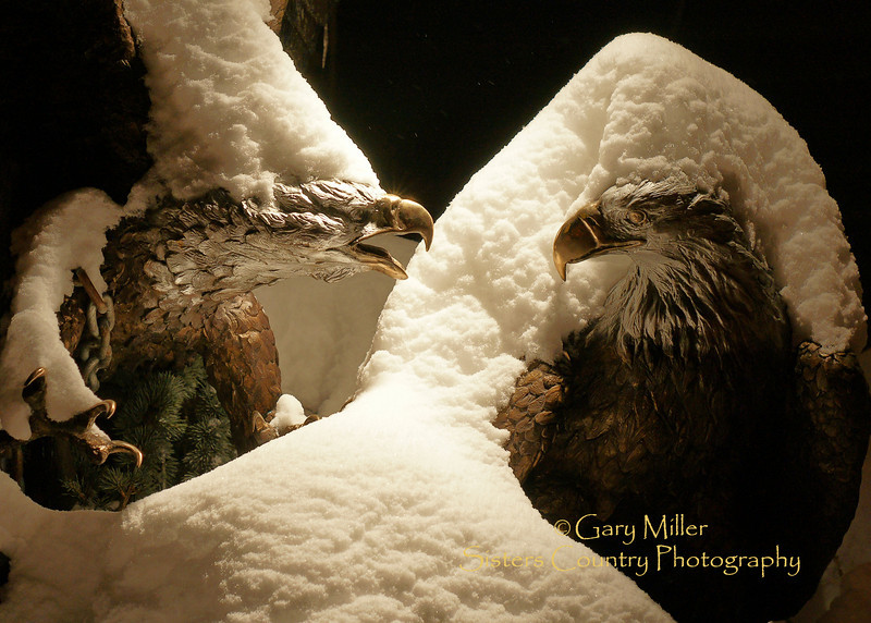Winter ice adds an eerie effect to the confrontation between two eagles in a bronze sculpture by Lorenzo Ghiglieri in an outside installation in Sisters, Oregon.  Gary Miller - Sisters Country Photography
