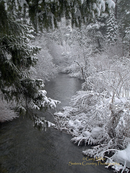 Link Creek meanders down on its way to the Metolius Basin from Suttle Lake, A fresh fallen snow captures the beauty of a Central Oregon Winter. Image by Gary Miller - Sisters Country Photography