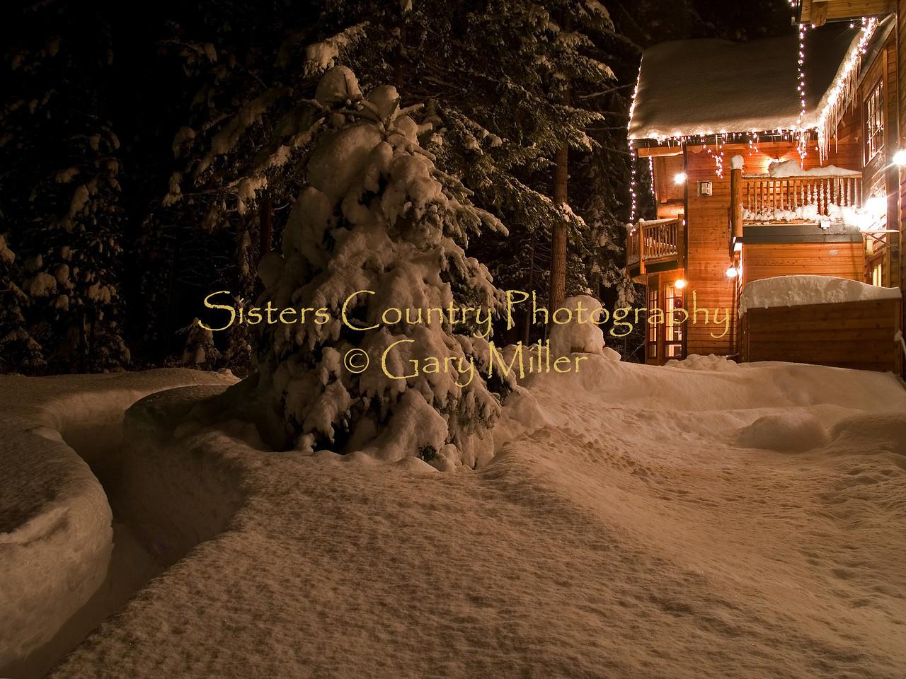 Winter Images - Gary Miller