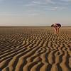 Ashley Sand Texture