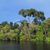 Rio Negro, Amazon, Brasil