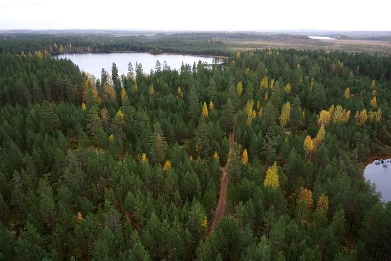 Leivonmäki National Park, Finland