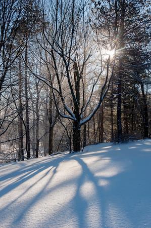 2014 Ellison Park snow