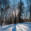 Snow scenes at Ellison Park.