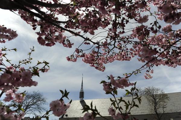 2015 Spring at St. Boniface and Highland Park