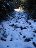 <center>Snow on the Trail    <br><br>Lake Placid, New York</center>