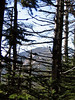 <center>Whiteface in the Distance    <br><br>Lake Placid, New York</center>