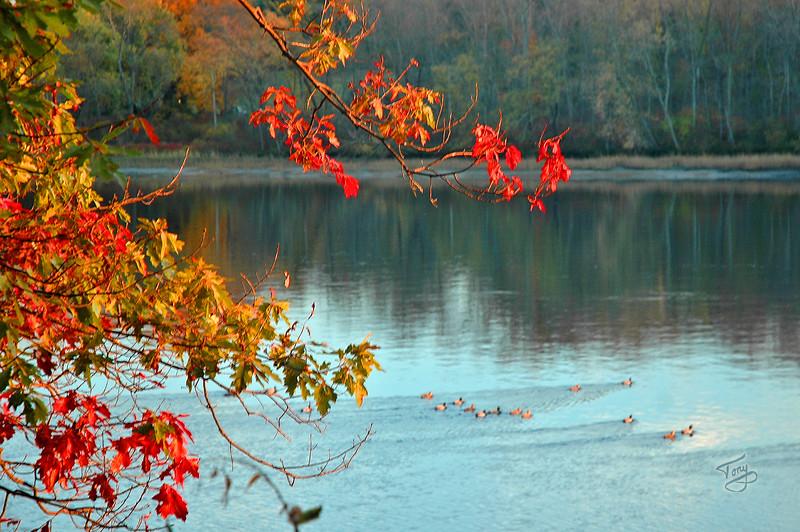 Amesbury, MA - 2006 Merrimack Autumn Splash
