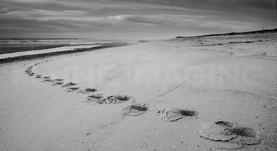 Footsteps.  Coast Guard Beach, Cape Cod.
