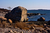 <center>Granite Boulder  <br><br>Another large Westerly Granite boulder sits on the shore.  <br><br>Bluff Point State Park<br>Groton, Connecticut</center>