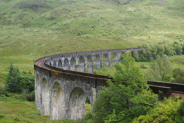 Glenfinnan viaduct (west hillside 13E) - 02