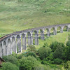 Glenfinnan viaduct (west hillside 13E) - 08
