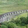 Glenfinnan viaduct (west hillside 13E) - 08
