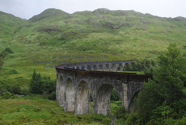 Glenfinnan viaduct (west hillside 13E) - 01