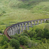 Glenfinnan viaduct (west hillside 13E) - 06