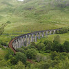 Glenfinnan viaduct (west hillside 13E) - 10