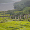 Glenfinnan viaduct (Forrest road 14SW) - 14
