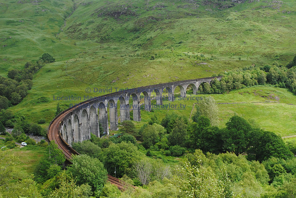 Glenfinnan viaduct (west hillside 13E) - 07