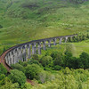 Glenfinnan viaduct (west hillside 13E) - 07