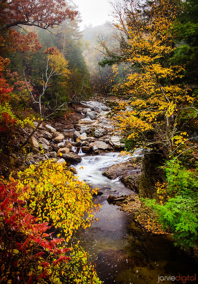 Vermont Colors - Vertical