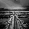 tracks in montana