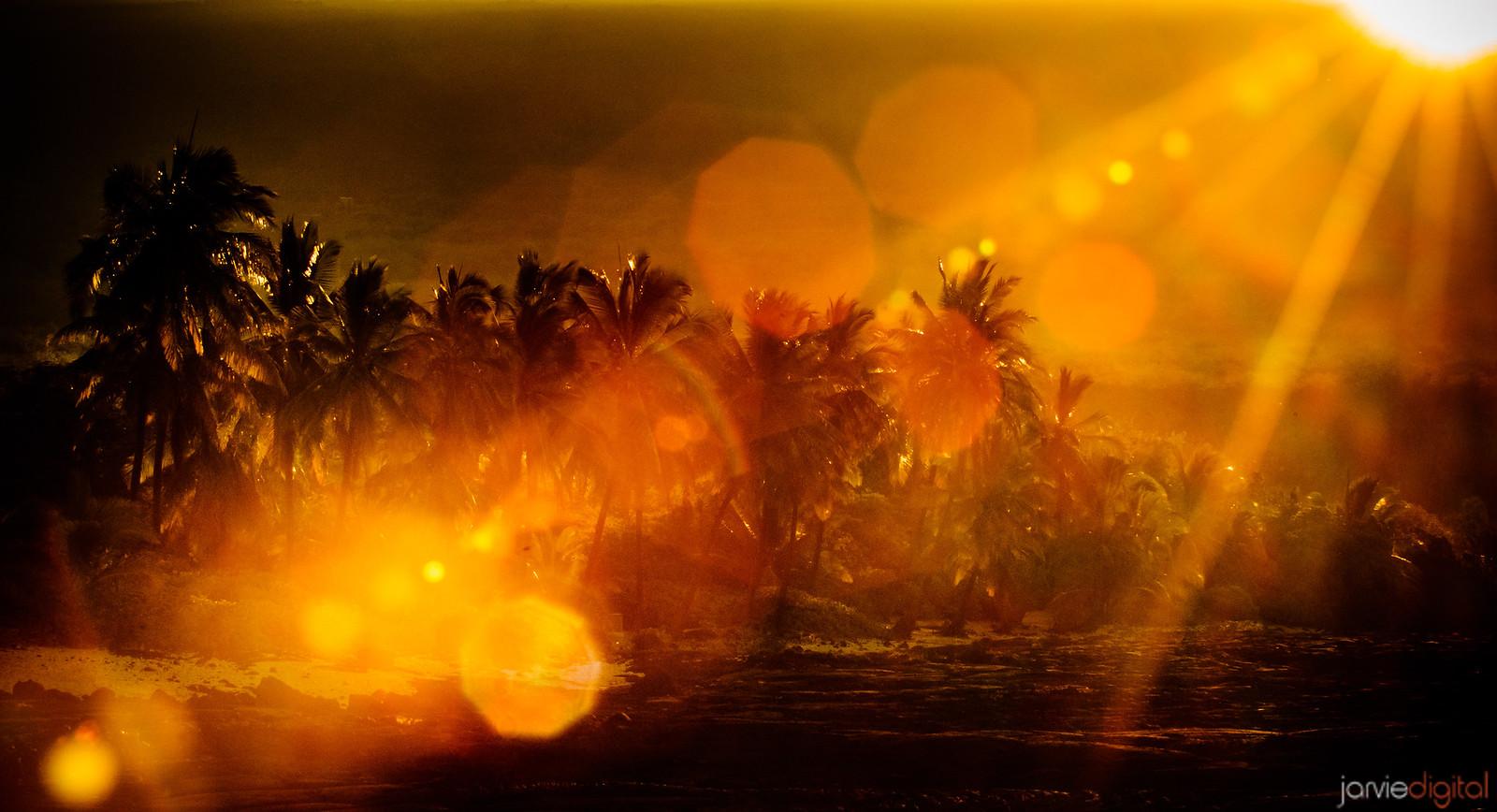 Hawaiian Flare