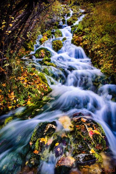 Fall Flows