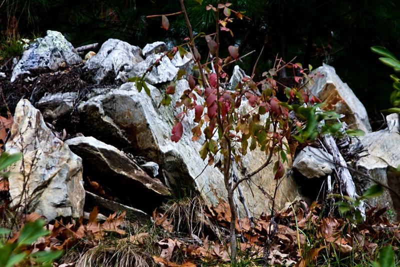 <center>Rock Pile<br><br>Blackstone Valley Bike Path<br>Cumberland, Rhode Island</center>