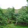 Fairy Glen Uig Skye - 38