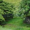 Fairy Glen Uig Skye - 43
