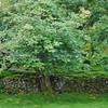 Fairy Glen Uig Skye - 40